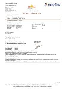 55037109-1-POMA-MIRET-BONELL--JOAN-110816-009