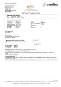 55037490-1-MONDIAL-GALA-MIRET-BONELL--JOAN-250816-009
